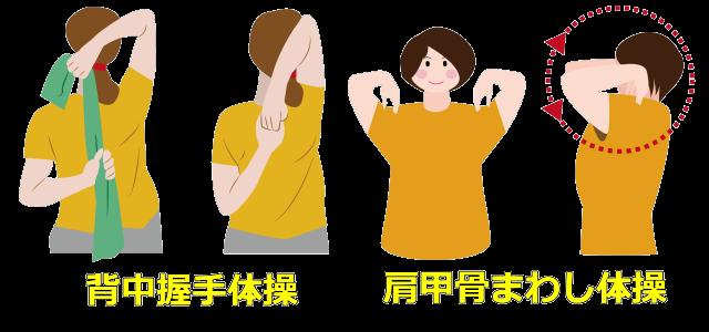 肩周り運動例